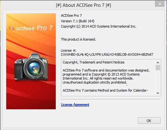 ACDSee Pro crack download