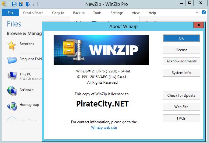 WinZip 21 PRO crack download